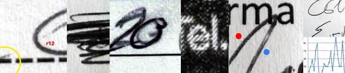 perito calligrafo e perito calligrafico